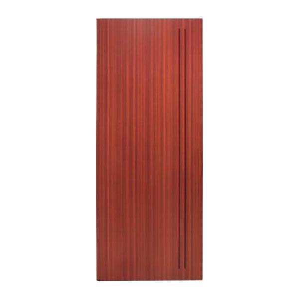 Puerta SAGA-100 1130-L