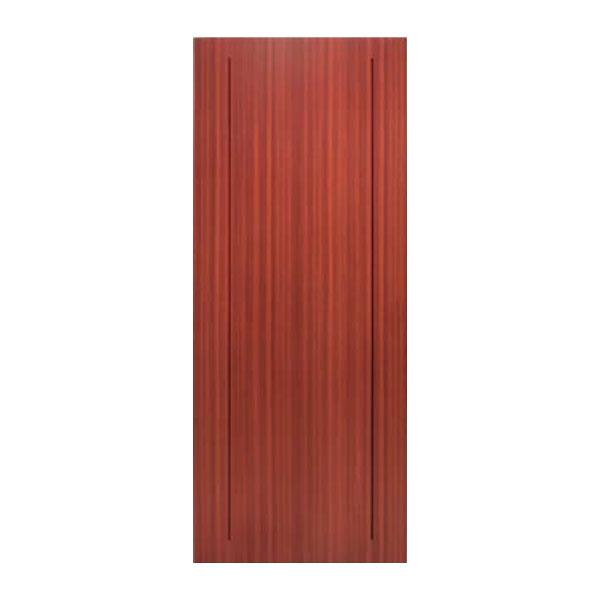 Puerta SAGA-100 1130